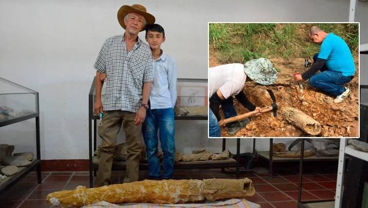 Niño y su abuelo descubrieron colmillo de mastodonte en Agualinda, Norte de Santander